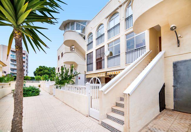 Appartement à La Zenia - Gilda